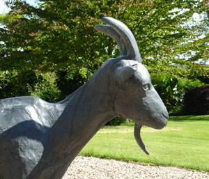 Gladys - Bronze goat by Mo Farquharson